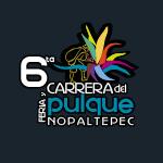 6a Carrera del Pulque Nopaltepec 2019